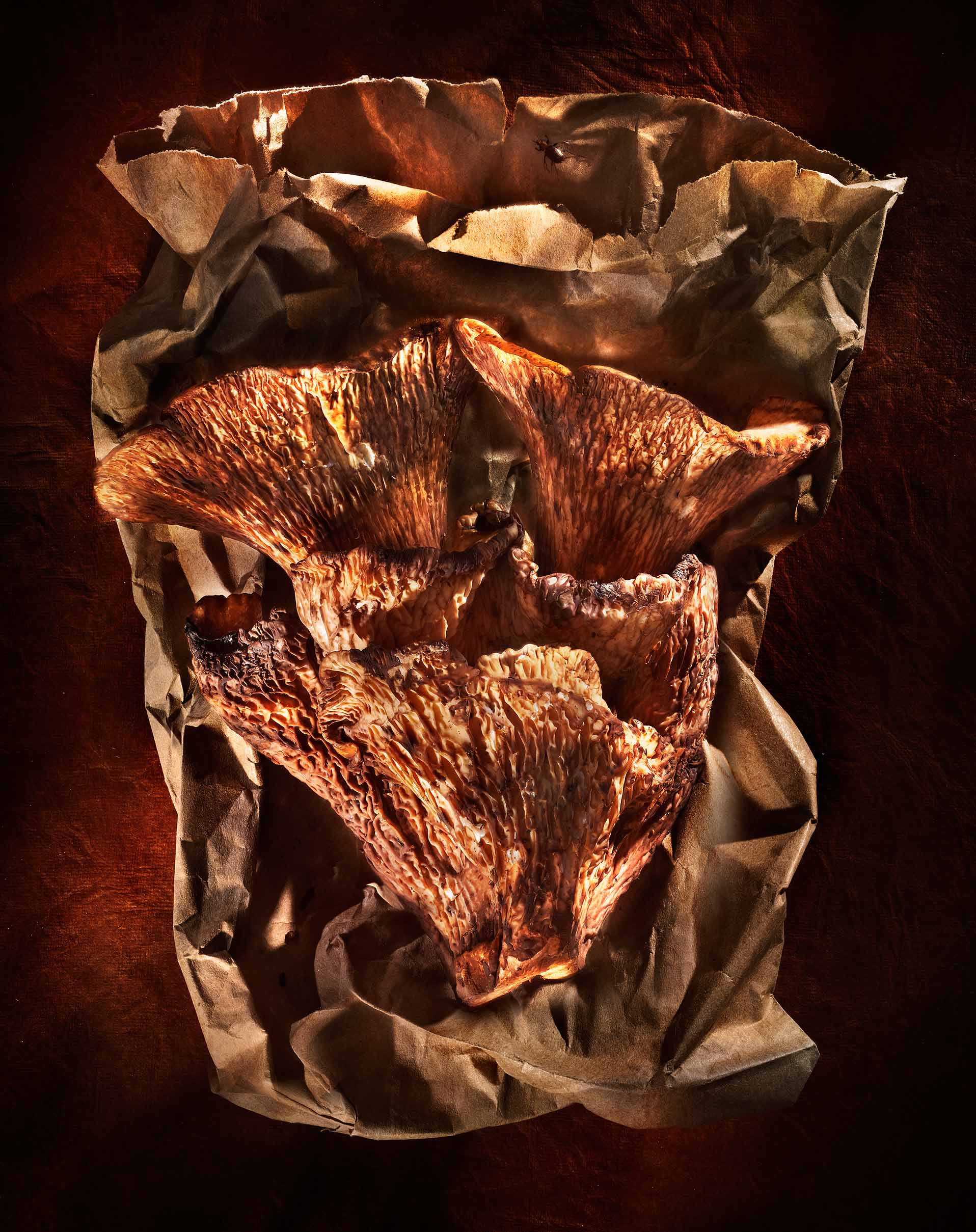 Chanterelles mushrooms on paper bag